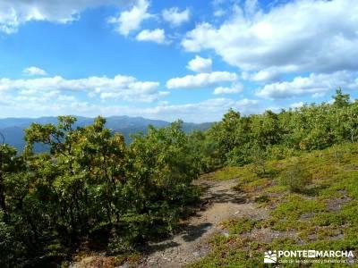 Ocejón - Sierra de Ayllón; hacer senderismo;viajes de una semana;senderismo a tu aire